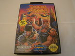 Double Dragon 3 - Sega
